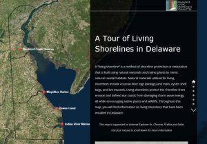 Living Shoreline Story Map