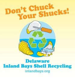 Credit: Delaware Center for Inland Bays