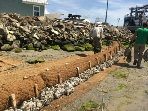 Indian River living shoreline installation with oyster bags.