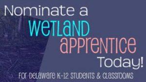 Wetland Apprentice Banner