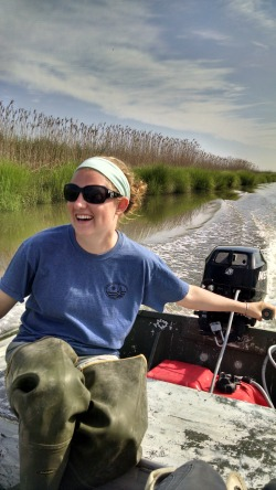 Tess taking the wetlands boat for a spin.
