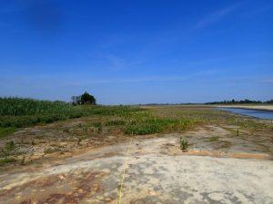 The same Prime Hook National Wildlife Refuge assessment site after restoration work.