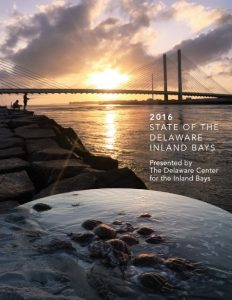 pic-2-state-of-the-bays-cover