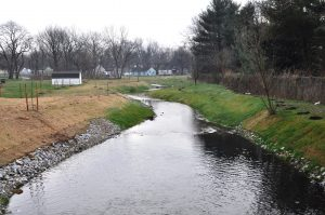 Bridgeville Branch Tax Ditch channel after the stream restoration project was completed. Note the meander of the channel, which is similar to the flow of natural streams
