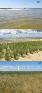 Prime Hook National Wildlife Refuge Marsh Restoration Site
