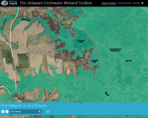 Delaware Wetland Toolbox Map shows wetlands on property