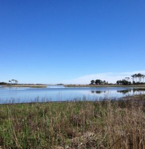 Gordons Pond at Cape Henlopen State Park