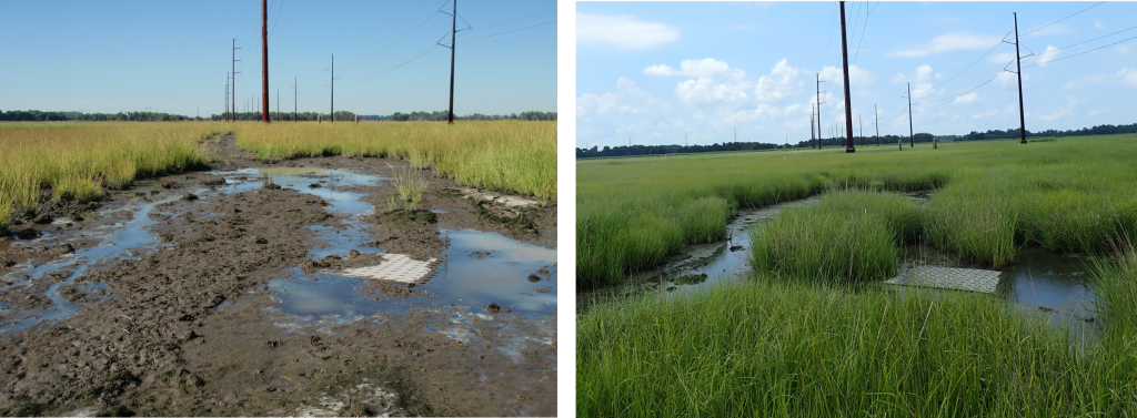 Site post construction in 2015 (left) and 2019 (right). Notice the water paths have remained over the years.