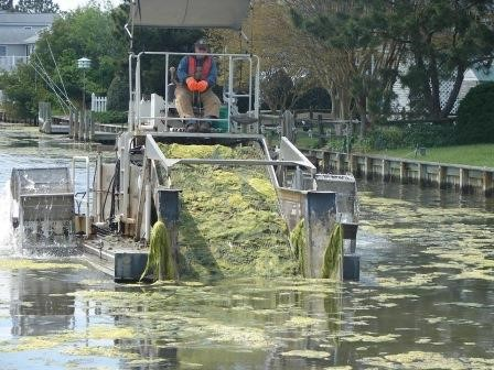 Macro-algae harvester (Photo: DNREC Shoreline & Waterway Section)