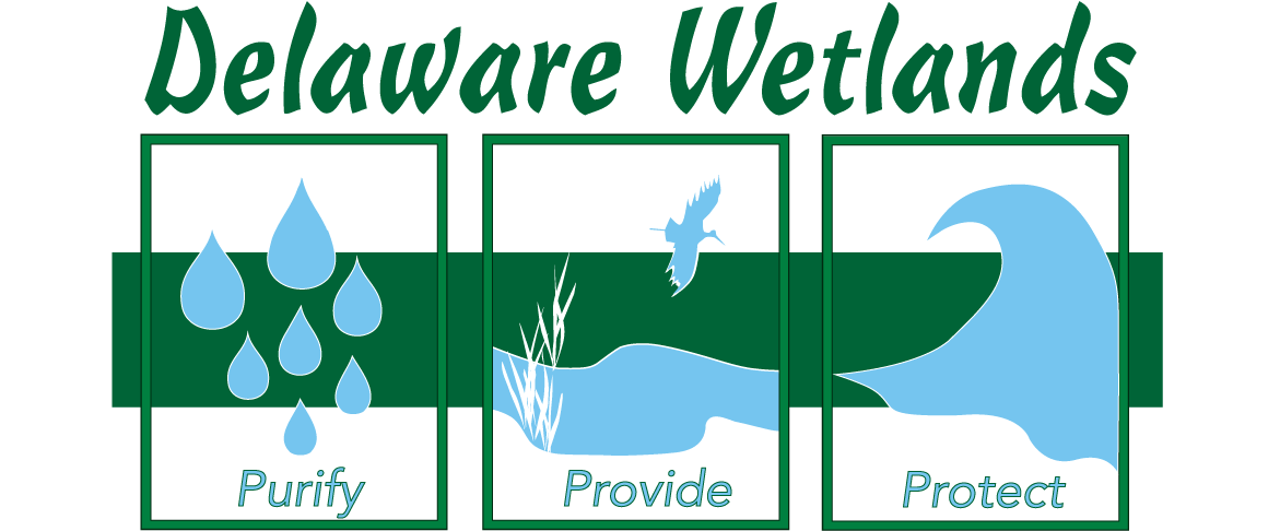 Delaware Wetland Management & Assessment Program