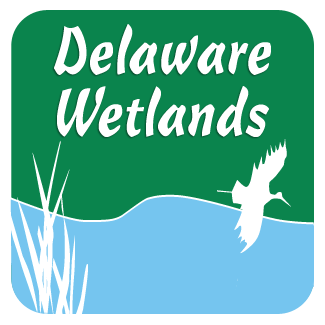 Delaware Wetland Monitoring & Assessment Program